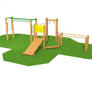 Fitness Stations and Frames monkey bars and swings